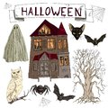 Vector illustration set of cartoon assorted Halloween accessories Spider, Black Cat, Web, Bat, landscape with scary old house, old