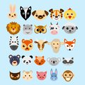Vector illustration set of cute cartoon animals heads in flat style.