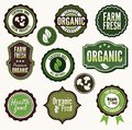 Vector illustration of the set of organic and farm fresh food badges and labels Royalty Free Stock Images