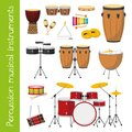 Vector illustration set of percussion musical instruments in cartoon style Royalty Free Stock Photo