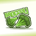 Vector illustration on the theme of  broccoli Royalty Free Stock Photo