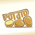 Vector illustration on the theme of  potato Royalty Free Stock Photo