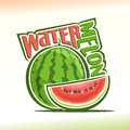 Vector illustration on the theme of watermelon Royalty Free Stock Photo