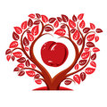 Vector illustration of tree with leaves and branches in the shape heart an apple inside fruitfulness fertility idea Stock Photography