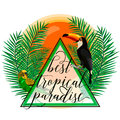 Vector illustration of tropical paradise card with palm leaves, birds, parrot, toucan, sun, summer lettering sign in Royalty Free Stock Photo