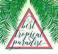 Vector illustration of tropical paradise card with palm leaves, summer lettering sign in triangle. Creative color Royalty Free Stock Photo
