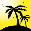 Vector illustration of a tropical sunset and palm  Royalty Free Stock Images