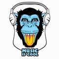 Cool Monkey.