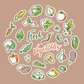 Vector illustration of vegetable with a place for text.