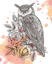 Vector illustration of wild totem animal - Owl with roses Royalty Free Stock Photo