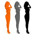 Vector illustration women Royalty Free Stock Photography