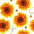 Vector illustration of yellow sunflowers and leaves seamless pattern