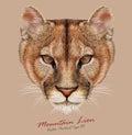 Vector illustrative portrait of mountain lion cougar cat is american big wild cat Stock Photo