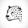 Vector image of an cheetah face Royalty Free Stock Photo