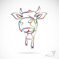 Vector image of an cow on white background Stock Image