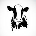 Vector image of an cow on white background Stock Images