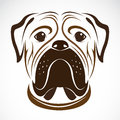 Vector image of an dog bulldog on white background Royalty Free Stock Photos