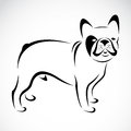Vector image of an dog bulldog on white background Royalty Free Stock Image