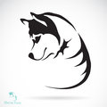 Vector image of a dog siberian husky on white background Royalty Free Stock Image
