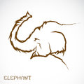 Vector image of an elephant illustration Royalty Free Stock Images