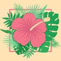 Vector image of a flower of hibiscus and tropical plants on a yellow background in a square frame. Summer tropical illustration. Royalty Free Stock Photo