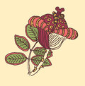 Vector image of a flower in vintage style on colored background Royalty Free Stock Image