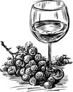Vector image of a glass of wine and grapes cluster Stock Photos
