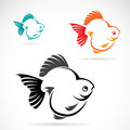 Vector image of an goldfish on white background Stock Images