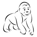 Vector image of an gorilla on white background Royalty Free Stock Images