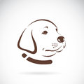 Vector image of an Labrador dogs head. Royalty Free Stock Photo