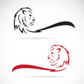 Vector image of a lion on white background Stock Images