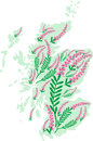 Vector image map of Scotland with heather flowers Royalty Free Stock Photo