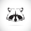 Vector image of a raccoon face on white background Royalty Free Stock Image