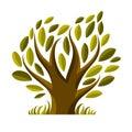 Vector image of single branchy tree nature concept art symboli symbolic illustration plant forest idea Royalty Free Stock Photography