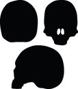 Vector Image - skeleton head silhouette  on white background Royalty Free Stock Photo