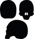 Vector Image - skeleton head silhouette  on white background Royalty Free Stock Photo