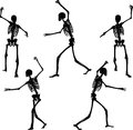 Vector image skeleton silhouette in intimidating pose on white background illustration Stock Photos