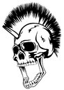 Vector image skull of the punk with mohawk on head Stock Photos