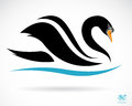 Vector image of a swan on black background Stock Photo