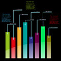 Vector informative statistics template color graph Royalty Free Stock Image