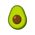 Vector isolated avocado