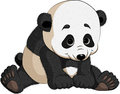 Vector isolated illustration sitting panda Royalty Free Stock Photography