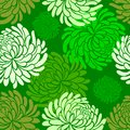 Vector japanese seamless pattern with Chrysanthemums on green background ,japanese floral pattern tenugui