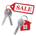 Vector keys on a white background Stock Images
