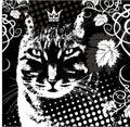 Vector king cat