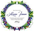 Vector label template wine grape branches with for watercolor Royalty Free Stock Image