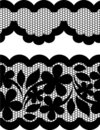 Vector lace Royalty Free Stock Image
