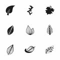 Vector leaf icon set Royalty Free Stock Photo