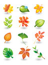 Vector  leaves Stock Images