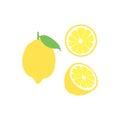 Vector lemon fruit icon set. Isolated on white
